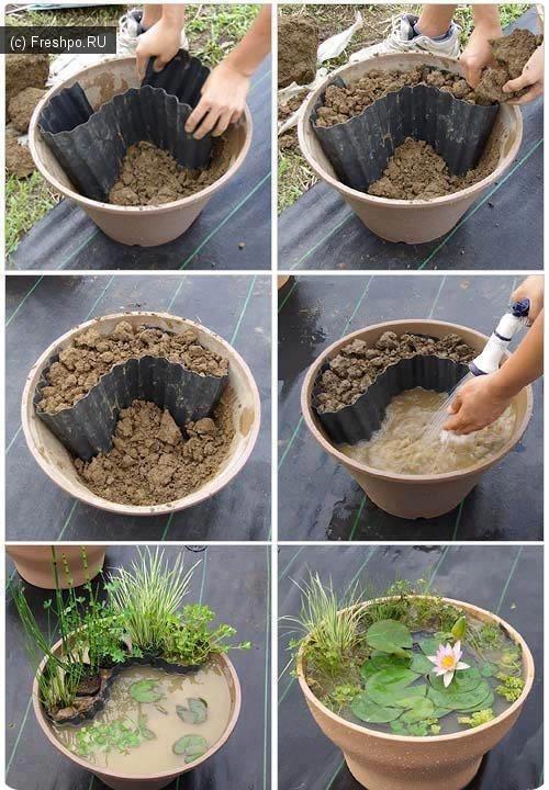 Как сделать прудик дома? Гениальная идея!