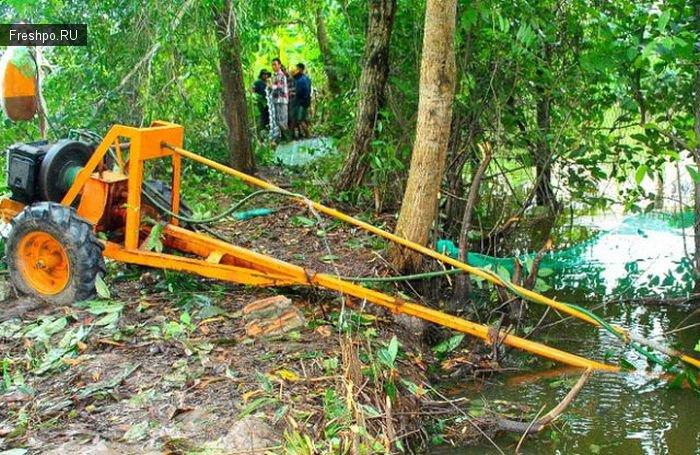 Как вылавливают крокодилов или борьба Китайцев с нежеланными поселенцами деревенских рек!
