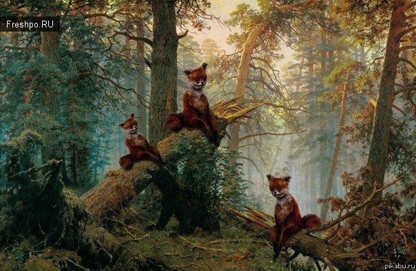 Три упоротых лисы Шишкина - три медведя