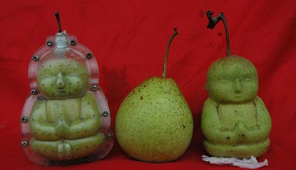 Китайская груша с ликом младенца Будды - новые тренд Китая